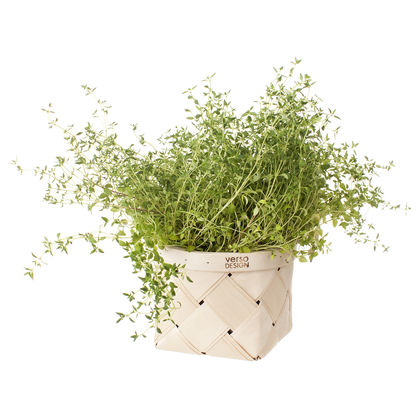 LASTU herb basket